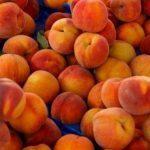 peach perfection fragrance